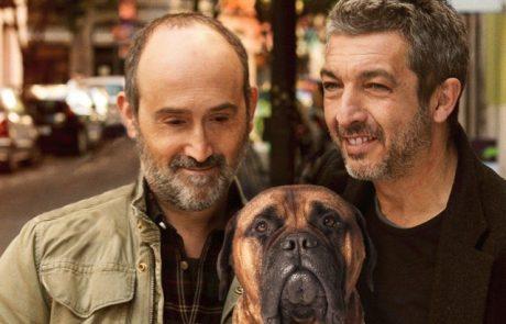 אירופה בזול – הלהיטים האירופיים המפתיעים בבתי הקולנוע